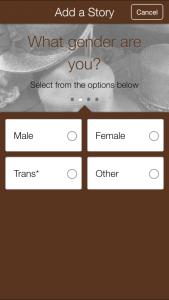 Will to Adorn - Some Metadata Choices