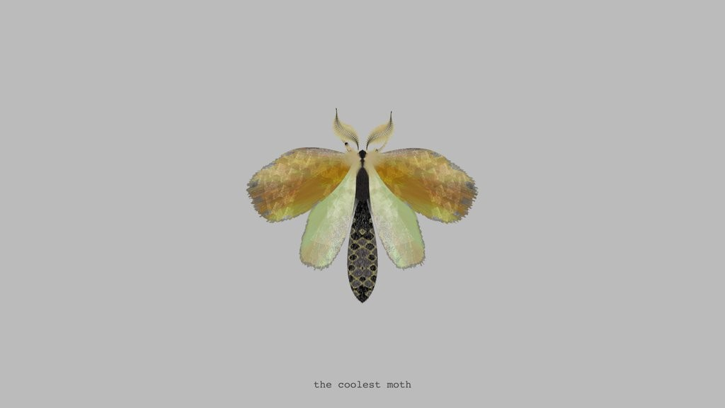 moth created by @mothgenerator