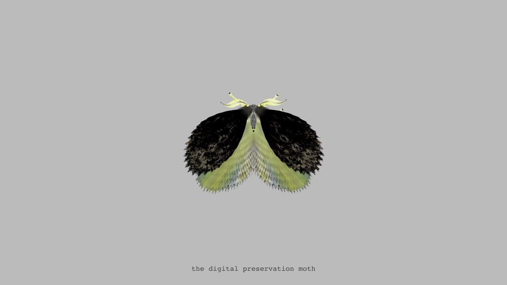 "<a href=""https://twitter.com/mothgenerator/status/720541444860198912"">The Digital Preservation Moth via @mothgenerator</a>"
