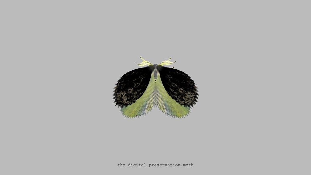 "<a href=""https://twitter.com/mothgenerator/status/720541444860198912"">The Digital Preservation Moth via @mothgenerator</a>"